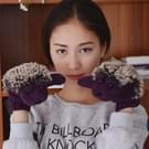 Winter Lovely Cartoon muis breien Lady wanten Warm Cartoon Hedgepig Full Finger Gloves(Purple)