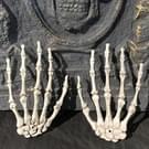 Een paar Halloween Skeleton handen Haunted House decoratie rekwisieten  grootte: 15 5 x 10cm