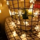 10m Snowflake vorm String decoratie lichten  70 LED met uitbreiden Interface  AC 110V(Warm White)