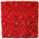 Rode bloeiende Rose Peony Hydrangea kunstmatige codering bloem DIY bruiloft muur decoratie Foto-achterwand  grootte: 50 x 50 cm