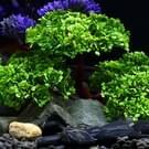 Kunstmatige boom Plant gras beeldjes miniaturen Aquarium Fish Tank landschap  grootte: 24 0 x 17 0 cm