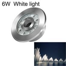 6W landschap ring LED roestvrijstaal onderwater fontein licht (wit licht)