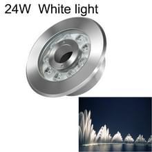 24W landschap ring LED roestvrijstaal onderwater fontein licht (wit licht)