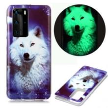 Voor Huawei P40 Pro Lichtgevende TPU Soft Protective Case (Starry Sky Wolf)