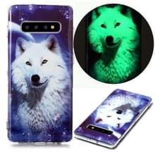 Voor Samsung Galaxy S10+ Lichtgevende TPU Soft Beschermhoes (Starry Sky Wolf)