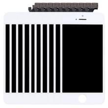 10 stuks 3 in 1 voor iPhone 5 (LCD + Frame + touchpad) Digitizer vergadering (wit)