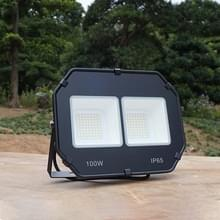 100W outdoor waterdichte Spotlight flood licht