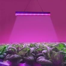 T5 4.8W rood licht + blauw licht LED Plant groei-Light  24 LEDs broeikasgassen licht Aquarium licht