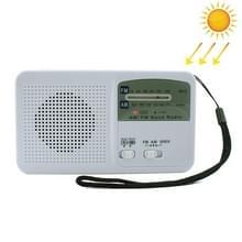 Hand crank Dynamo zonne-energie radio zelf aangedreven telefoon oplader LED zaklamp Emergency Survival (wit)
