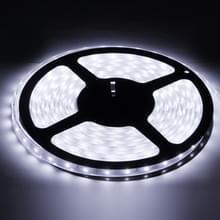Behuizing waterdicht touw licht  lengte: 5m  wit licht 6000-6500K 3528 SMD LED  60 LED/m
