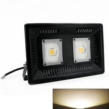 100W Waterdichte LED Floodlight Lamp  2 x 48 LED SMD 2835  Luminous Flux: > 8000LM  PF > 0.9  RA > 80  AC 90-140V(Warm White)
