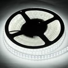 Behuizing waterdicht touw licht  lengte: 5m  dubbele rij wit licht 3528 SMD LED  120 LED/m