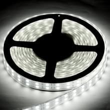 Behuizing waterdicht touw licht  lengte: 5m  dubbele rij wit licht 5050 SMD LED  120 LED/m