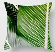 Tropische planten kussen zaak polyester decoratieve kussenslopen groene bladeren gooien kussen cover Square 45CM x45CM (25)