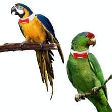 2 PC'S creatieve handgemaakte aangepaste Parrot kraag Bow tie  specificatie: L