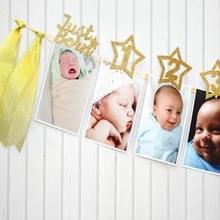 Leeftijd viering decoratie achtergrond pentagram fotomap 1-12 maanden baby foto record partij banner pull vlag