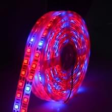 5m 300 LEDs SMD 5050 volledige spectrum LED strip licht Fitolampy groeien lichten voor broeikasgassen hydrocultuur plant Waterproof (3 rood 1 blauw)
